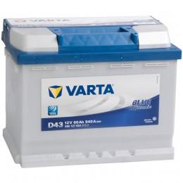 VARTA Blue D43 (60L)  540А прямая полярность 60 Ач (242x175x190)