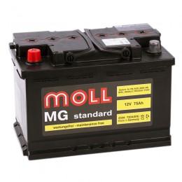 MOLL MG Standard 75L 720A 276x175x190